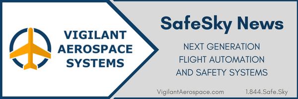 SafeSky Newsletter header